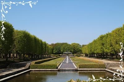 20130422の公園.JPG